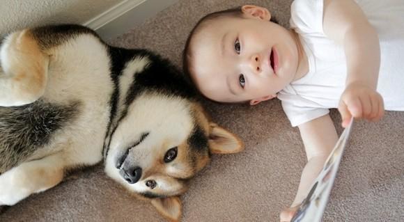 Issa和Maru是最好的朋友~