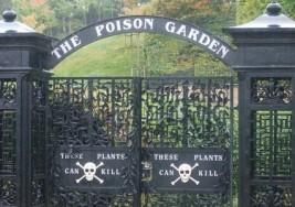逛這個花園要小心:英國毒物花園