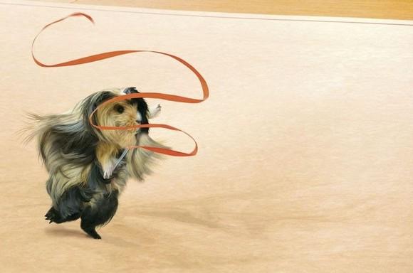 guinea-pig-games-10[5].jpg