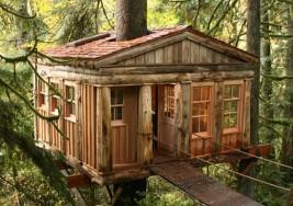 華盛頓樹屋旅店
